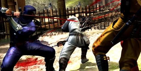 ninja-gaiden-3-multiplayer-screenshot-640x325
