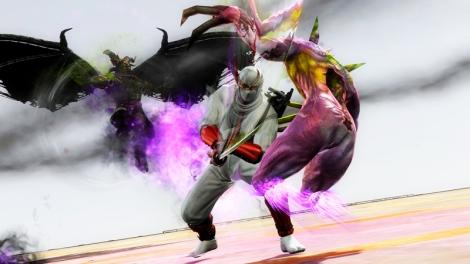 ninja gaiden dlc 2