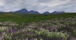 Lord of the Rings Online Riders of Rohan 11