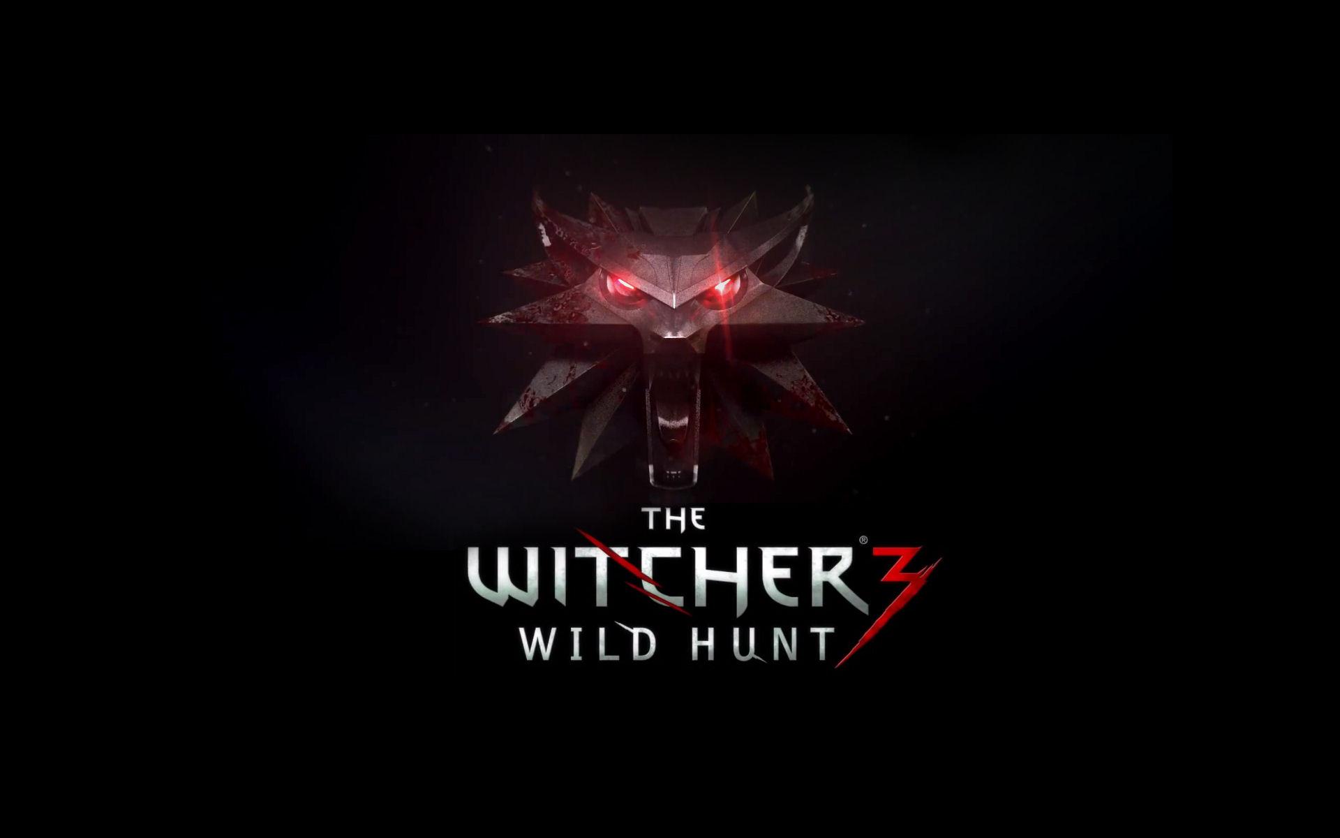 The Witcher 3 Wild Hunt Warner Bros Interactive