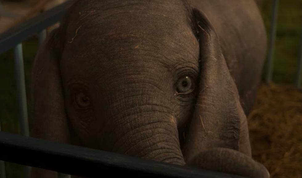 Dumbo | Vean su nuevo tráiler!